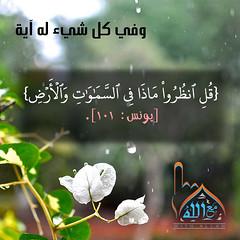27 (ar.islamkingdom) Tags: الله ، مكان القلب الايمان مكتبة أسماء المؤمنين اسماء بالله، الحسنى، الكتب، اسماءالله
