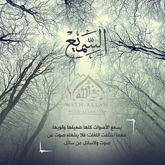 41 (ar.islamkingdom) Tags:
