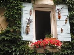 Lavanda & cicale = Provenza (Raffa2112) Tags: flowers france window lavender ivy finestra shutters provence fiori francia cicadas provenza lavanda edera persiane cicale finestrefiorite floweredwindow canonpowershotg10 raffa2112