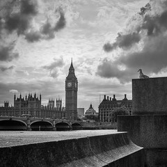 Seagull watching big ben (*hassedanne*) Tags: big ben seagull bw london