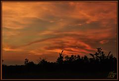 A closer look (WanaM3) Tags: park landscape twilight texas sony houston redsky civiltwilight a700 sonya700 wanam3 elfrancoleepark