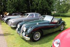 Brooklands Double Twelve 2016 Jaguar XK 150 (JagDavey) Tags: double 150 jaguar twelve brooklands xk 2016