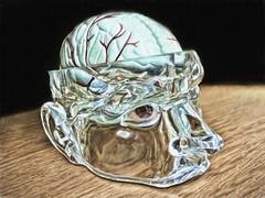 when the snitch wins (Pejasar) Tags: brain ice glass shelf half cold cool art odd