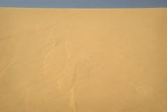 South Of Singing XII (Doha Sam) Tags: summer digital sand nikon raw desert dunes wilderness qatar d80 southerndesert samagnew smashandgrabphotocom wwwsamagnewcom maketiff manualrawprocessing