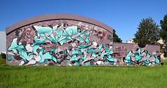 Rusl   Puaks  Ozer  Nilko  Dater (HBA_JIJO) Tags: urban streetart france art wall painting skull graffiti crane letters spray peinture writer mur lettre lettring lettrage saintegenevivedesbois paris91 lartauxgants hbajijo art11association