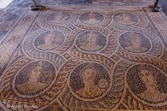 Roman Mosaic floor (Askjell's Photo) Tags: hellas medieval greece oldtown rodos rhodes cos rhodos middleage knightsofstjohn egeo aegeansea mosaicfloor thegrandmasterspalace knightshospitaller rhodosoldtown askjell magnusmagister