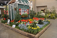 2016-03-11_0192n_netherlands (lblanchard) Tags: netherlands displaygarden 2016flowershow