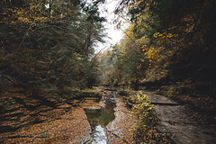 Flickr1-16.jpg (Hreilly) Tags: park new york 3 ny nature 35mm canon landscape outdoors photography long exposure flickr mark nj sigma upstate falls glen national waterfalls 5d hunter reilly watkins taughannock reillyhunter