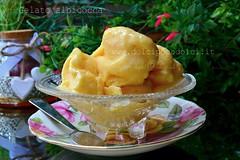 Gelato albicocca (Roberta Giovagnoli) Tags: gelati albicocca bimby ricette