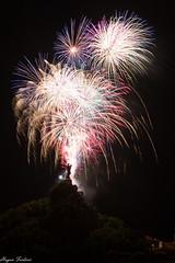 14072016-IMG_4876 (hugon frederic) Tags: fireworks nuit france auvergne haute loire puy en velay feux artifice juillet armistice fete statut vierge damme bebe