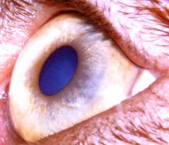 "eyescarletcloseup • <a style=""font-size:0.8em;"" href=""http://www.flickr.com/photos/95808399@N03/8760403376/"" target=""_blank"">View on Flickr</a>"