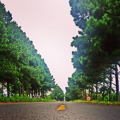 """Leave your world behind"" (DENNYS LOPES #G.) Tags: road square drag highway estrada squareformat freeway cho asphalt mayfair asfalto rs riograndedosul osorio rodovia riograndedosulbrasil passinhos iphoneography feelgooddrag instagramapp uploaded:by=instagram passinhosrs"