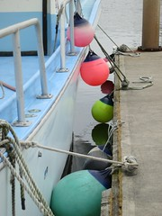 Buoy colours (Ruth and Dave) Tags: pink green boat dock colours bright harbour colourful ropes tied anacortes fishingboat buoys moored