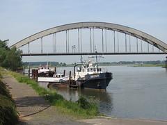 Schip Dolfijn Culemborg (Arthur-A) Tags: netherlands train river ship nederland railway brug dolfijn trein railwaybridge lek culemborg schip rivier spoorbrug