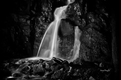 By the Light of the Silvery Moon (SunnyDazzled) Tags: longexposure light bw newyork nature night forest painting landscape waterfall sticks stream glow fantasy lighttrails unusual ghostly fitzgeraldfalls takenin3layers