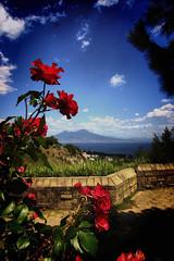 The Vesuvius under the roses (thanks for 1.000.000+ views) Tags: travel sea vacation sky italy seascape nature canon landscape photography volcano italia sigma napoli naples vesuvius nationalgeographic blinkagain photographyforrecreation vigilantphotographersunite vpu2 vpu3 vpu4 vpu5