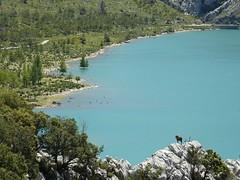 Watching on (therealmarky) Tags: ocean blue trees sea mountain water animal landscape island rocks antelope majorca