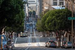 San Francisco (Edi Bhler) Tags: sanfrancisco california plant building tree strasse pflanze structure bauwerk baum gebude schiene vereinigtestaaten 80400mmf4556 nikond3 streetsofsanfranciscolm
