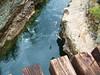 Cliff Diving- BC, Canada (vanessa_morawski) Tags: bctrip jumpingwater riverdiving summer2009