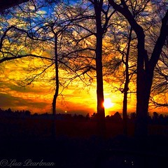 #sunsetlovers #sunsetoftheday (Scorpiol13) Tags: blue trees winter sunset red sky orange nature colors silhouette yellow skyline clouds skyscape square landscape fire twilight colorful glow shine bright vibrant massachusetts horizon newengland burning flame passion romantic hdr fiery sunsetlovers iphoneography sunsetoftheday