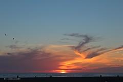 Los Angeles (fiorebianco84) Tags: california venice sunset panorama usa beach america stars landscape star losangeles santamonica unitedstatesofamerica panoramic malibu observatory hollywood beverlyhills lax walkoffame griffith spiaggia paesaggio jamesdean statiuniti boulevad