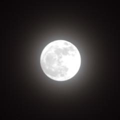 月(2014/02/14) (asat4) Tags: moon sony α7r {vision}:{sky}=0886 {vision}:{dark}=0883