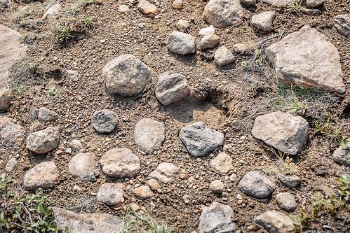 Bear's Footprint