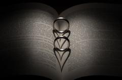 ... to forever bind them. (mjm.photos) Tags: show wedding light