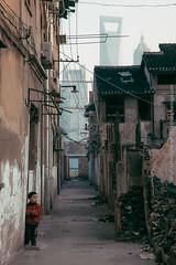 #SHANGHAiMAGE#THAT's SHANGHAI! Nov. 2011 Shanghai... (gropius(Shanghaimage.com)) Tags: shanghai