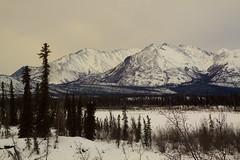 The Wrangles in Winter (Dan King Alaskan Photography) Tags: winter alaska sigma1224mm tok tokcutoff canon50d wranglemountains