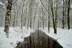 Twickel (l-vandervegt) Tags: holland nature water netherlands landscape nederland natuur twente overijssel landschap niederlande twickel delden 2015