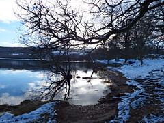 Head of Loch Tay (nz_willowherb) Tags: winter see scotland tour perthshire visit tourist visitor lochtay killin to go stirlingcorepath visitkillin seekillin gotokillin
