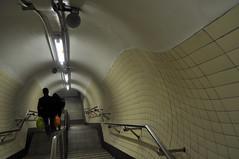 Beautifully organic tunnel