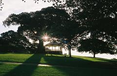 000020 (jayolz) Tags: sunset film 35mm landscape shadows olympus fujisuperia fujisuperiaxtra400 olympus35sp 35sp
