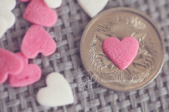 Love Hearts (Serena178) Tags: pink white money macro love baking coin soft heart sweet pastel australia cupcake cents penny iloveyou dreamy aussie loveheart 5cents cakedecorating macromonday