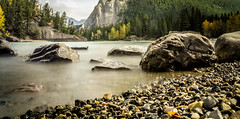 Down on the Pebbles. (ian.emerson36) Tags: autumn trees canada mountains green fall water yellow river rockies rocks pebbles filter alberta banff