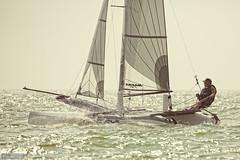 A man totally in his element (Anneke Jager) Tags: water sport zeilen canon wasser sailing outdoor ijsselmeer watersport zeilboot sportief annekejager