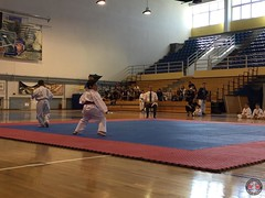 stefanou_15_5_2016_knockdown_7