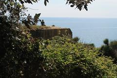 IMG_2787 (AndyiGi) Tags: foglie italia mare estate natura riposo sole ragazzi laspezia osservare seduti puntabianca