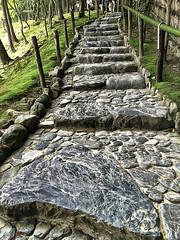 Stairway at the Silver Pavillion (KellarW) Tags: ginkakuji silver pavillion silverpavillion kyoto japan garden gardens zengarden zen buddhist buddhism moss iphone iphone6s