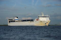 Finncarrier (DST_6984) (larry_antwerp) Tags: netherlands ship nederland vessel schelde roro  schip  finnlines rilland      finncarrier 9132002