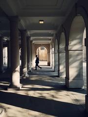 Colonnade revisited (aistora) Tags: light motion building silhouette architecture movement shadows space arcade figure contrejour colonnade vsco