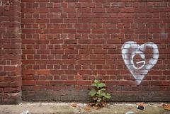 collingwood  280516-0095 (roger hyland) Tags: 3 collingwood g melbournegraffiti