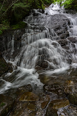 DSC09486.jpg (jjdun7) Tags: travel nature water oregon creek forest river landscape countryside waterfall stream lifestyle environment landforms 2016 2015 sardinecreek