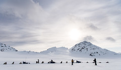 Svalbard 2016-957 (Cal Fraser) Tags: dog dogs norway landscape svalbard arctic sj parhelion sleddog dogteam spitzbergen sledgedog sledgedogs svalbardandjanmayen