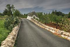 Trulli Road (hapulcu) Tags: adria adriatic alberobello apulia italia italie italien italy mediterranean puglia road spring trulli