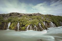 Hraunfossar, Iceland (Benedikt Halfdanarson) Tags: iceland waterfalls sland lavafalls hraunfossar icelandicwaterfall slenskirfossar
