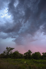 Storm 15Jun2016 (thefisch1) Tags: pink sunset sky cloud storm tree rain calendar wind nimbus horizon hill pasture kansas thunderstorm prairie flint turbulence intersting oogle priarie shear cumulo