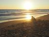 Jugando con la luz (nOé_VR) Tags: sea sun luz sol beach girl mar juegos streetphotography playa olympus arena ligth postal شمس sonne 太陽 güneş 太阳 ゲーム eguzkia zuico olympusomd olympusomdem5markii zuico1250mm