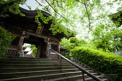 Jorenji Temple, Sanmon Gate () (christinayan01) Tags: japan architecture temple tokyo gate perspective